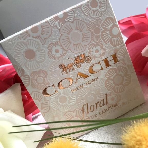 Floral Coach Blog About Archive Muse – La Surprenante City » qMSVpGUzL