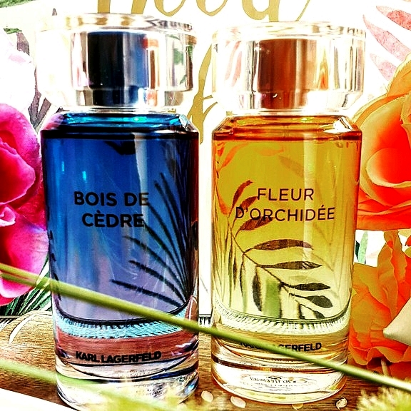 564b7145318 Muse about City » Blog Archive » Karl Lagerfeld Les Parfums Matières ...